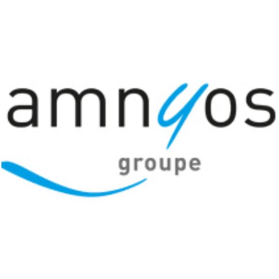 Team Amnyos